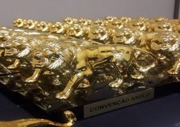 Fundação ganha Prêmio Leão de Ouro
